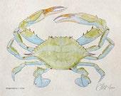 Blue Crab (8x10)