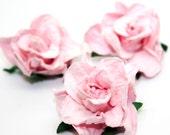 Shabby Vintage Rose- 5 roses per package