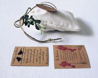 Mom Gift, Garden Seed Bomb Gift Bag 10 Wildflower Seed Balls Pinecones Easy Gardening Gift for Gardener Spring Gardening