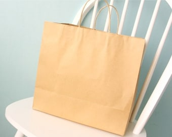 10 kraft shopping bags -large size