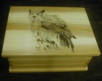 Great Horned Owl Cedar Box Wildlive Bird Nature