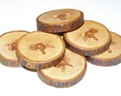 """7 Handmade apple wood Tree Branch Buttons with Bark, accessories (1,06"""" diameter x 0,20"""" thick)"""