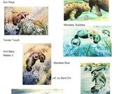 Manatee Variety - YOU PICK One - manatees you want  5 x 7 note card  Florida