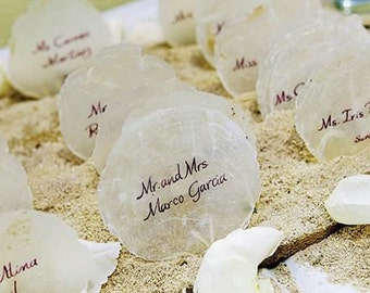 Shell Place Cards, Capiz, Set of 20