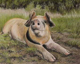 It's a hogs life! Pig Greetings card