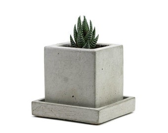 SALE CLEARENCE 30 % OFF Mini Square Planter w/ Tray