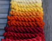 Bright, Fierce Colour... 24 Color Mini Skein Set, Canon Hand Dyes Charles Fingering Yarn