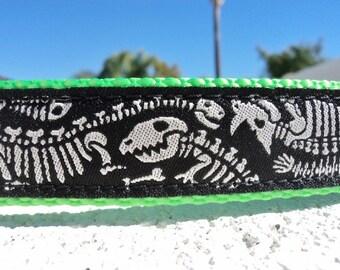"Sale Dog Collar Dinosaur Bones 1"" width side release buckle adjustable  - no martingales limited ribbon"