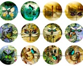 """1"""" Inch Steampunk Dreams, Dragonflies, Butterflies MagnetsFlat Back Buttons or Magnets 12 Ct."""