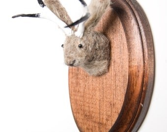 Miniature Needle-felted Jackalope Mounted Head on Wooden Plaque