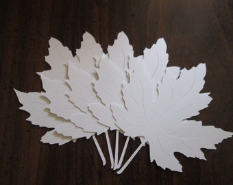 150 Large Veined White Fall Maple 4 inch Leaves die cuts