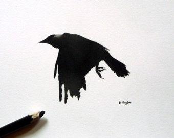 Jackdaw original charcoal sketch, crow drawing, original art, charcoal drawing, pencil drawing, crow art, wildlife art, gothic art, bird art