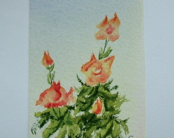 Aceo Original watercolour painting of peach Roses.