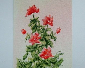 Aceo Original watercolour painting of red Roses.