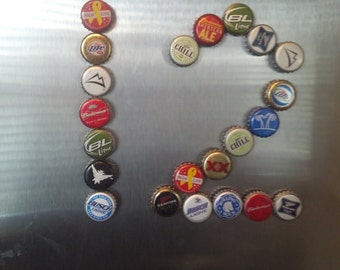 12-pack Domestic Beer Bottle Cap Magnets
