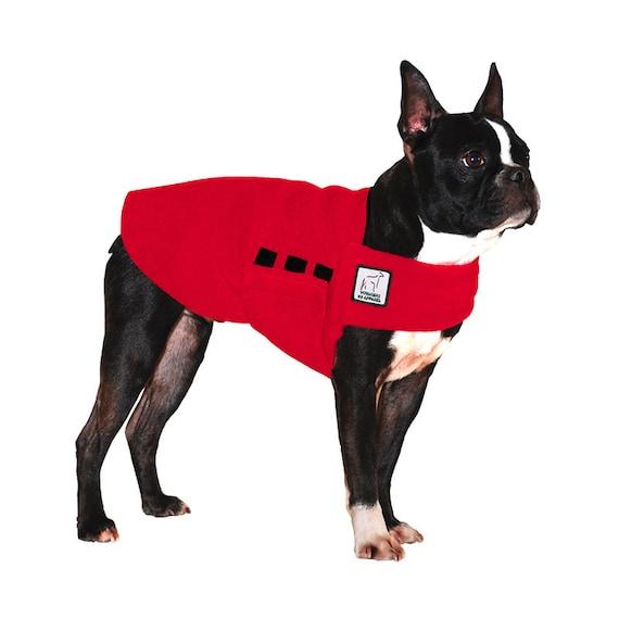 BOSTON TERRIER Tummy Warmer, Dog Clothing, Dog Sweater