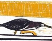 Crouching Green Heron Woodcut Print