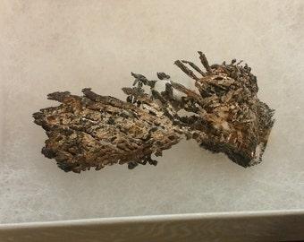 Crystallized Silver specimen