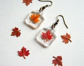 Real Autumn Maple Leaf Woodland Earrings - pressed leaves, maple leaf, leaf, autumn, natural, ooak gift