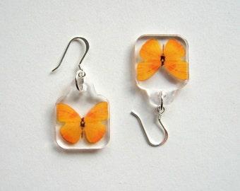 Butterfly Earrings - Enchanted Petites - orange, small earrings, Summer earrings, wings, flutter, Nature inspired, minimal, modern, resin