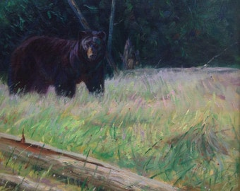 Discovered Check-Black Bear (original oil painting)