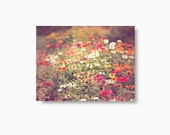 Flower Greeting Card, blank notecard set, blank greeting cards, colorful flowers, nature print, multicolor