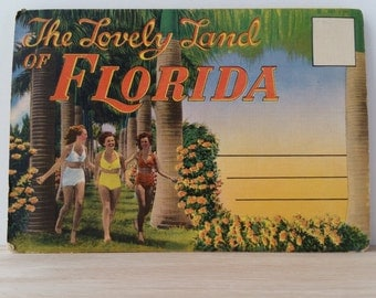 Florida Postcard Book by Colourpicture Boston MA