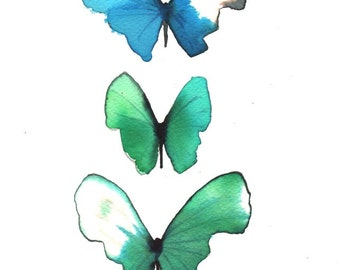 """butterfly trio blue turquoise, green and white 8 X 10"""" original watercolour painting"""