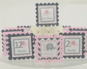 Elephant 12 Month Photo Banner, First Year Photo Banner, 1st Year Banner, Elephant Photo Banner, Light Pink and  Gray, c-1140
