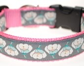 "RESERVED Light blue webbing - Magnolia 1"" Adjustable Dog Collar"