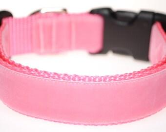 """Pink Velvet on Pink 1"""" Wide Adjustable Dog Collar"""