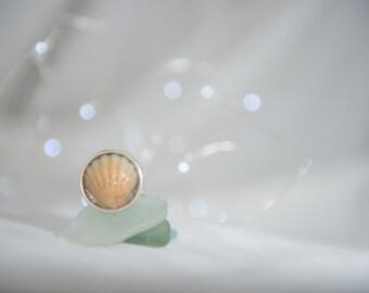 Kauai Sunrise Shell Adjustable Ring