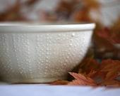 Sea Urchin Bowl for Soup, Latte, Sundaes - 8 oz