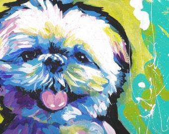 Shih Tzu Dog art print of modern pop art painting bright colors 8.5x11