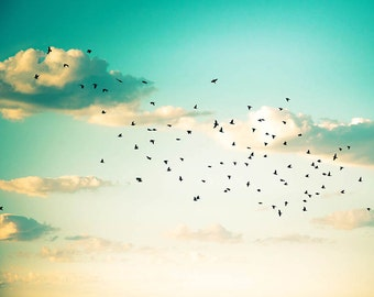 birds photography beach photography sunset birds flying 8x10 24x36 fine art photography sky cloud mint cream aqua coastal decor nursery wall