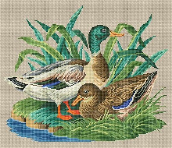 Wild Ducks Antique Birds Berlin Woolwork Counted Cross Stitch Pattern PDF