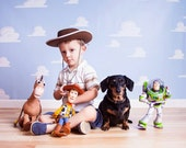 NEW ITEM 5ft x 5ft Vinyl Photography Backdrop / Toy Story Clouds Inspired / Birthday Photo Booth