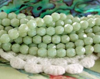 4mm Fire Polished, Czech Glass Fire Polished Beads, Czech Glass Beads, Faceted Glass Beads, Opaque Pale Turquoise - Star Dust Beads  CZ-192