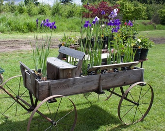Flower Wagon  - 11 X 14 Print