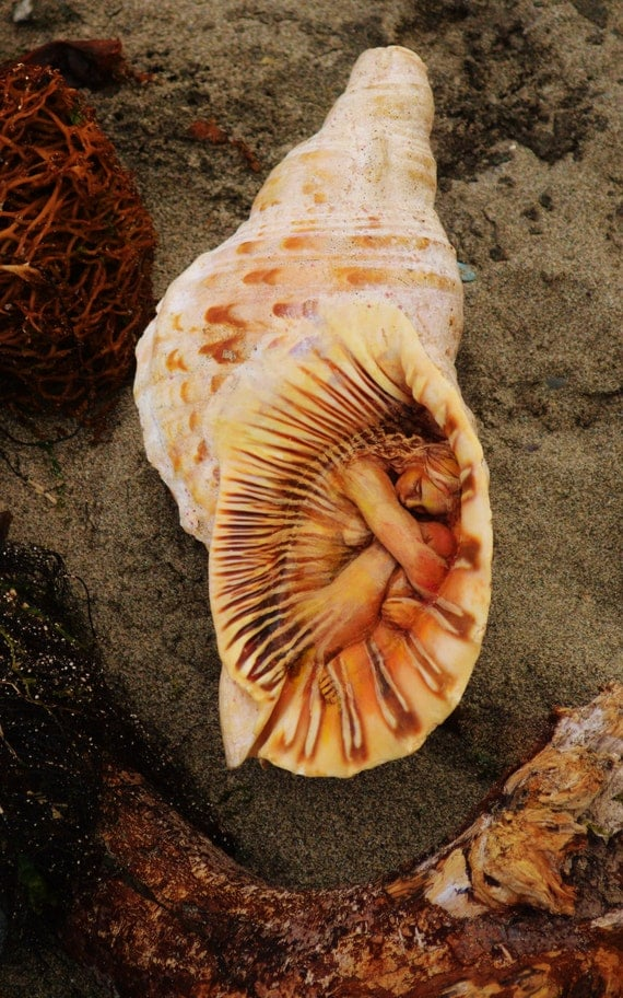 5 x 8 Print - Art Card, Healing Woman, Shell Beach Art, Sculpture by Shaping Spirit