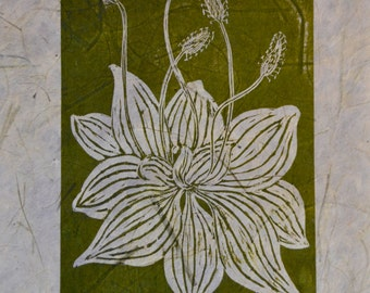 Limited edition Woodcut print 'Plantain'