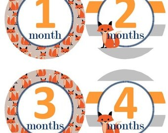 Baby Monthly Milestone Growth Stickers Fox Orange Grey Stripes Navy Nursery Theme MS529 Baby Shower Gift Baby Photo Prop