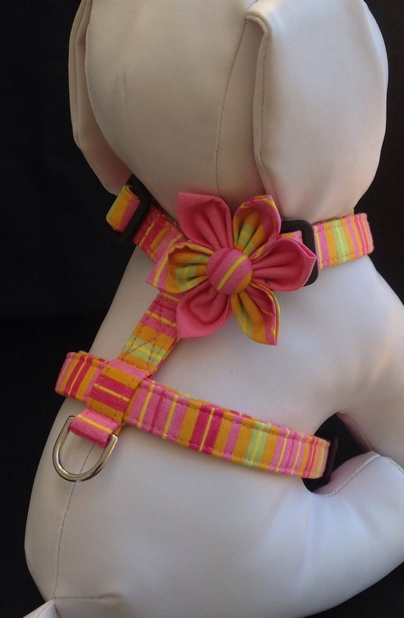 Dog Harness Flower Set - Multi Color Striped Pattern  - Size XS, S