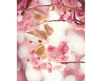 Cherry Blossom Postcard, Pastel, Pink, Botanical, Garden Photograph, Dreamy Art Print, Spring Card, Paris, Nature Photography