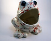 Frog Steel Wool or Sponge Dispenser