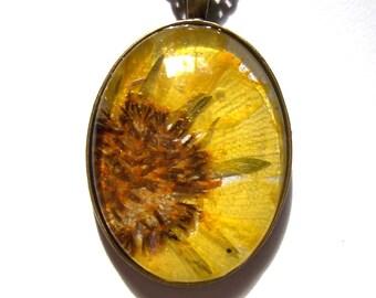 Pressed Flower Yellow Daisy  Wildflower Glass Texas Bronze Jewelry Necklace
