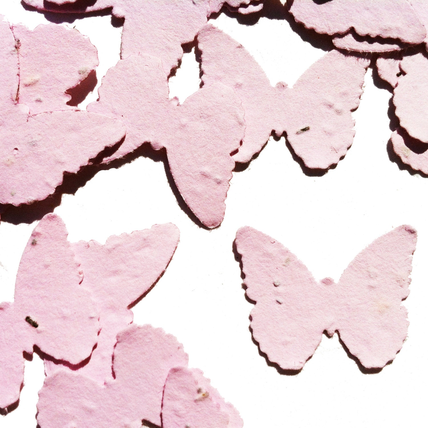 Pink Butterfly Shaped Plantable Seed Paper Confetti