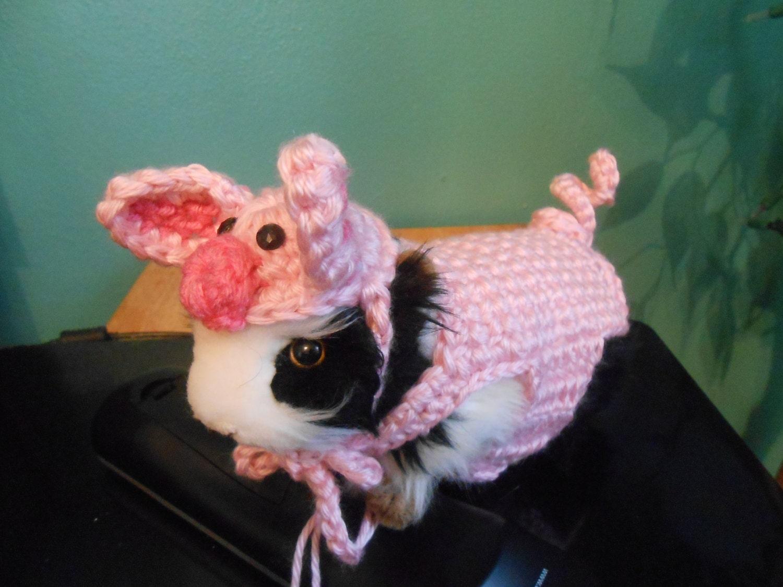 guinea pig farm pig sweater and pig hat guinea pig clothes