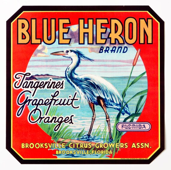 Vintage Blue Brand 43