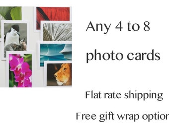 Blank Cards Set - Assorted Greeting Cards, Custom Choice 4 to 8 Cards